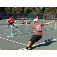 """Pickle Ball Net 34""""x22"""""""