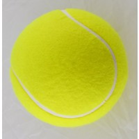 Clarke Promotional/Autograph Tennis Ball 5""