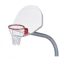 Gooseneck Basket Ball System with Double Rim - Chain Net