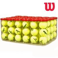 Wilson Practice Balls Case (24 Cans)