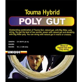 Big Hitter Poly Gut String 16G